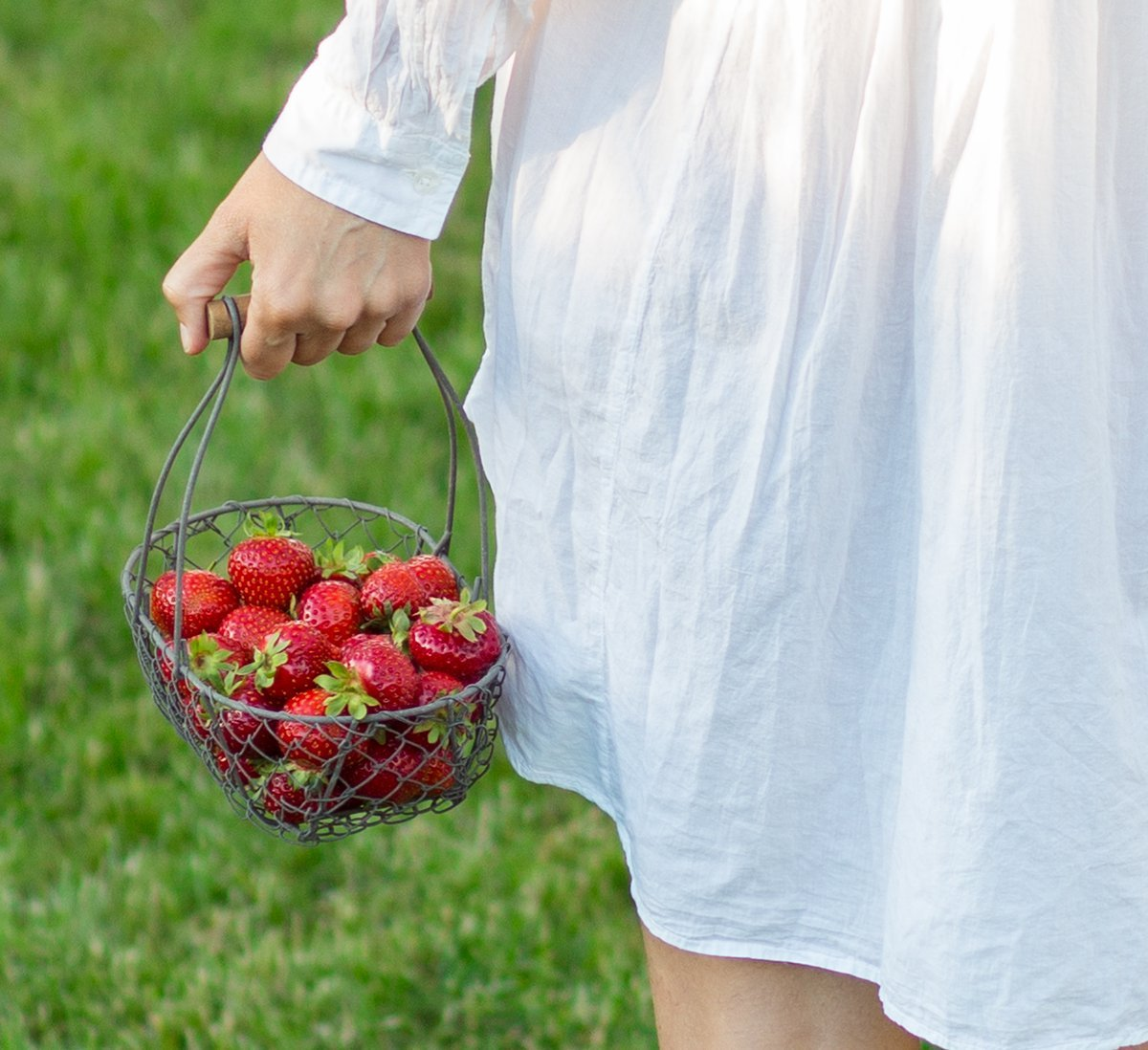 Korb mit Erdbeeren für Erdbeerkuchen mit Vanillepudding