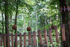 Hochseilgarten Altenhof – ein toller Familienausflug